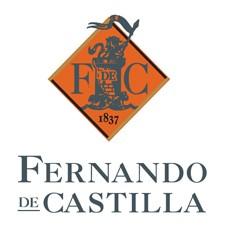 Rey Fernando de Castilla